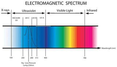 UV Sterilizer High Output