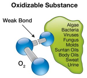 functions of ozone